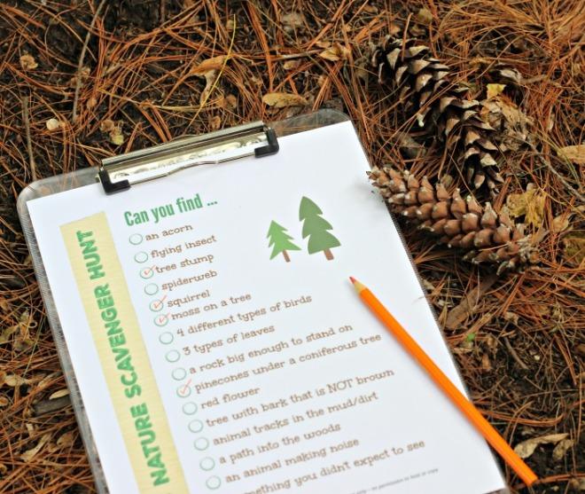 nature-scavenger-hunt-ideas
